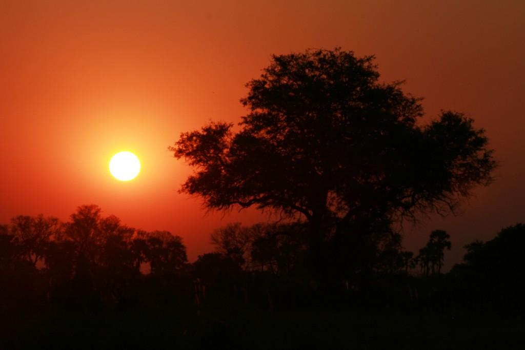 Sunset 30